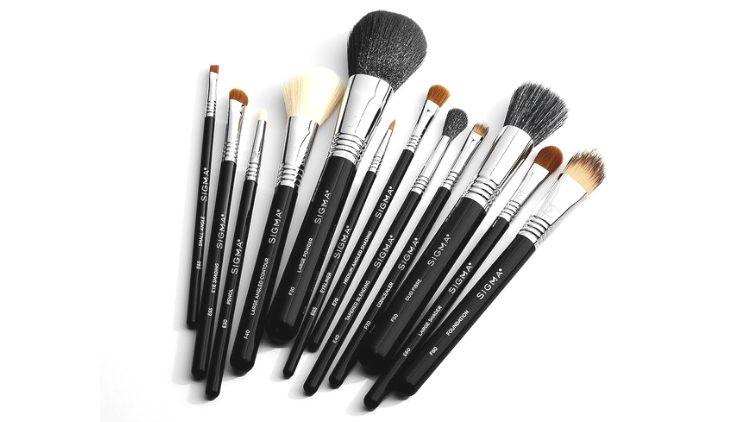 Sigma Beauty Essential Brush Kit Vegan Brush Set